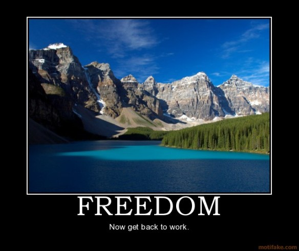 freedom-freedom-work-funny-wilderness-outdoors-demotivational-poster-1205482803